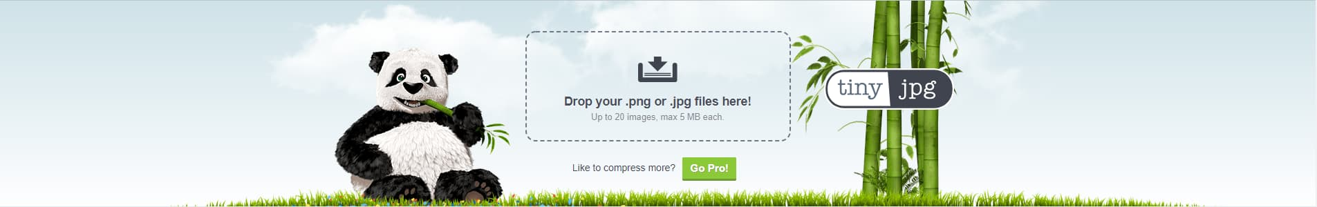 How to compress images online with TinyJPG